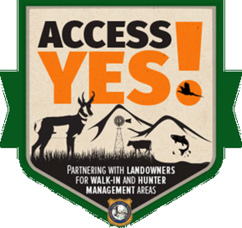 Access Yes 1