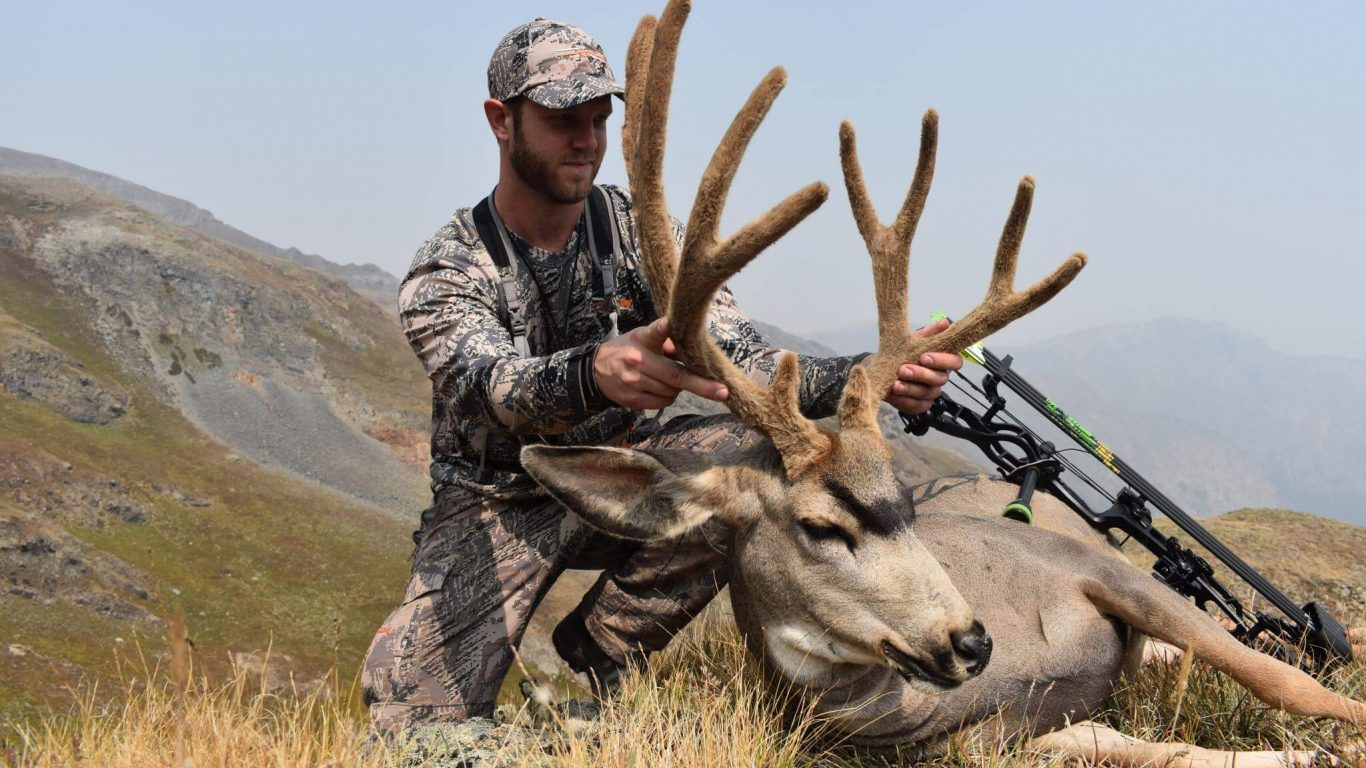 Colorado High Country Archery Mule Deer Recap