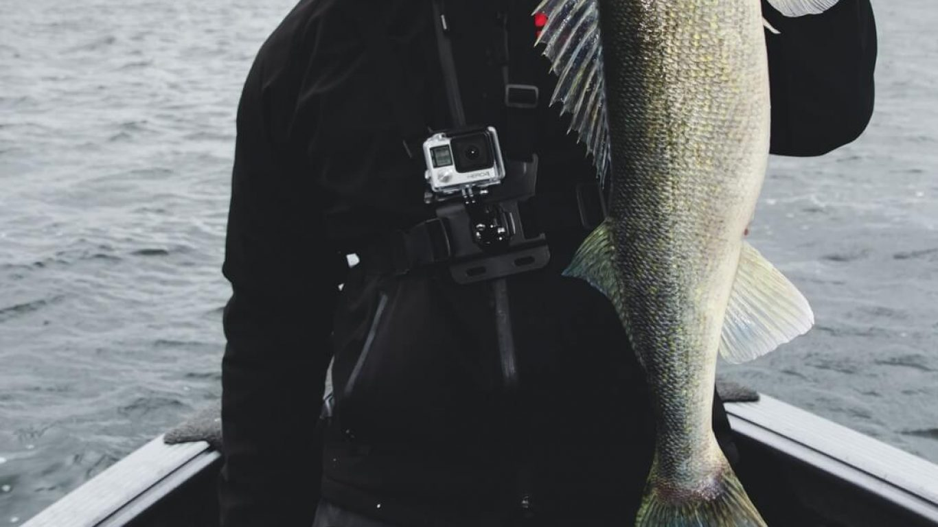 Walleye Fishing with Lee Kleinow