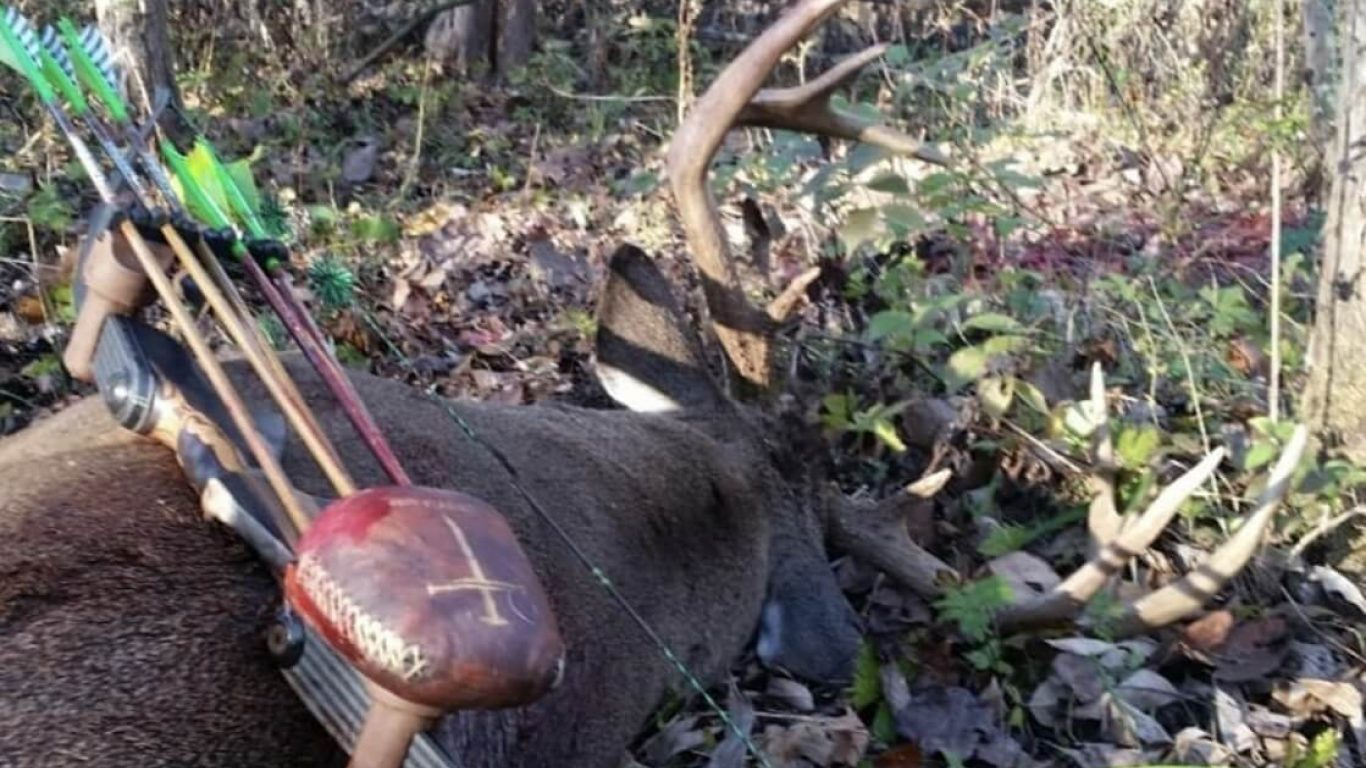 2020's Golden Nuggets For Southern Public Land Bucks