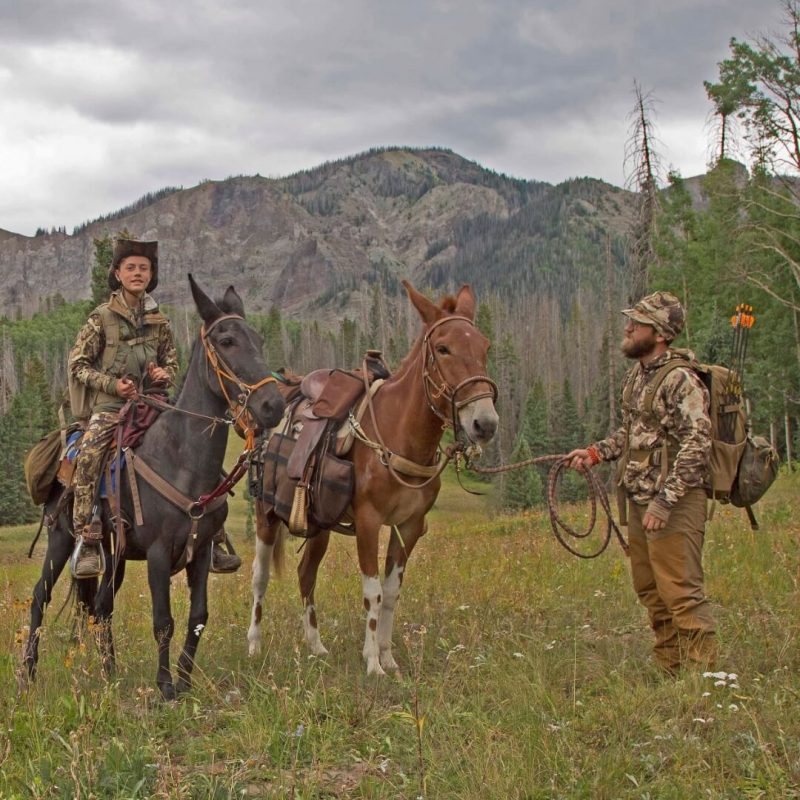 Elk Hunting With Clay Newcomb