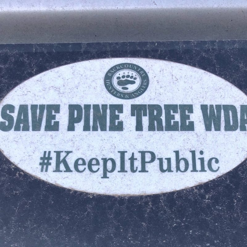 Save the Pine Tree Research Station