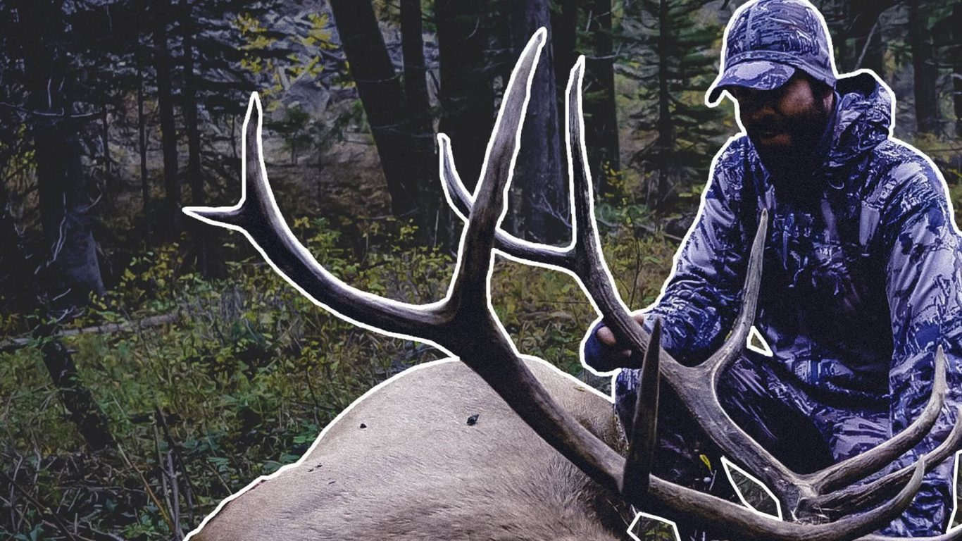 DIY Montana Elk Hunt | Check Mate