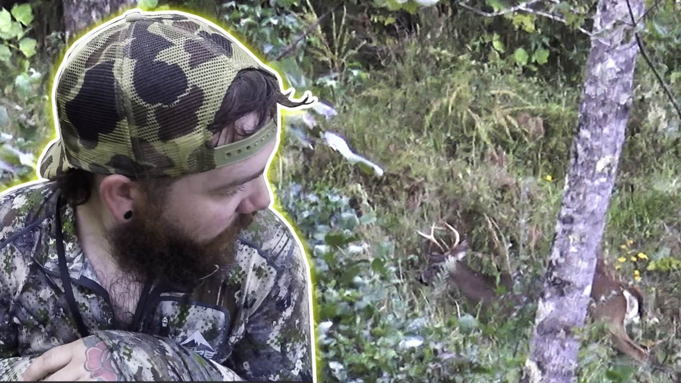 Finding Public Land Buck in Tennessee